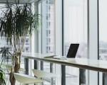 kancelar_office